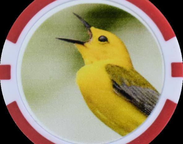 Pokerchip birdie 2
